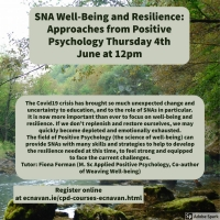 NESC Online 34 - SNA Well-Being and Resilience: Approaches from Positive Psychology